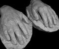 Gilels' hands