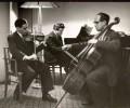 Trio Probe. Leonid Kogan, Mstislav Rostropovich 60-e gody